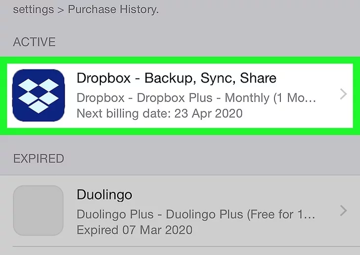 Step 7: Select the Dropbox subscription.